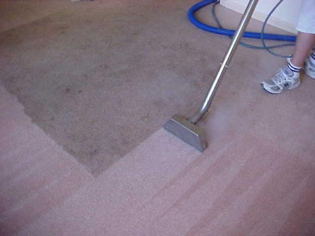 carpet clean gold coast image 20