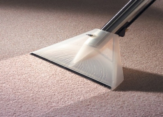 carpet cleaning gold coast image 106